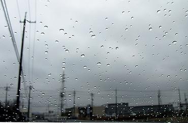 0219雨模様 -01   _1725-s.jpg